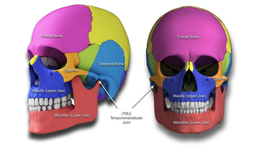 Upper and Lower Jaw Surgery (Maxillary Osteotomy and Mandibular Osteotomy)